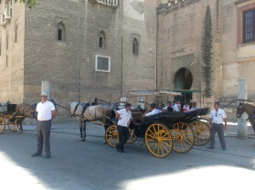 Sevillian Carriages Copyright Shelagh Donnelly