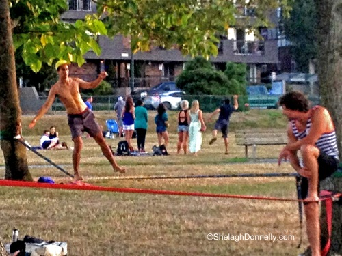 Kits Tight Rope Copyright Shelagh Donnelly