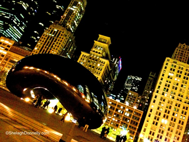 Chicago's Bean 1828 Copyright Shelagh Donnelly