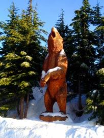 Grouse Bear 0977 Copyright Shelagh Donnelly