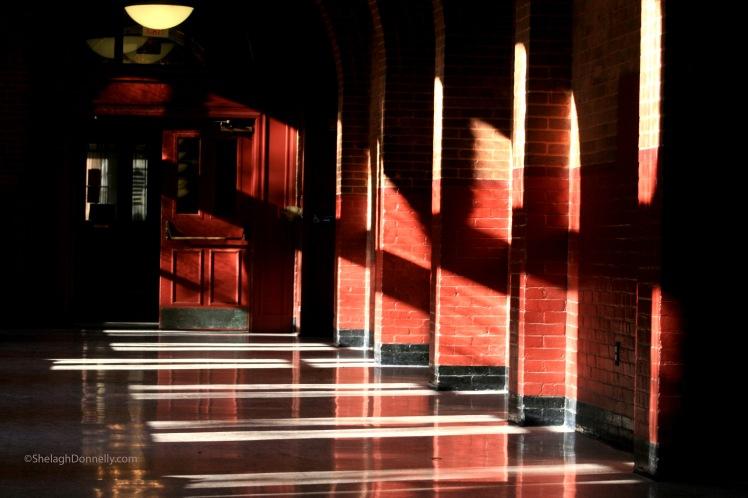 Georgetown U 4488 Copyright Shelagh Donnelly
