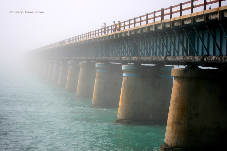 Seven Mile Bridge 3168 Copyright Shelagh Donnelly