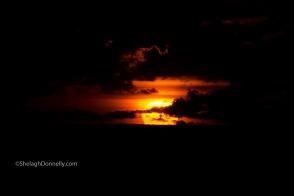 Miami Beach Sunrise 4044 Copyright Shelagh Donnelly
