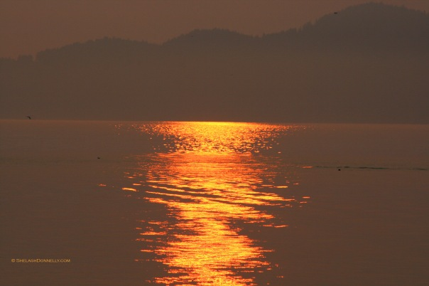 Spanish Banks Sunset 5425 Copyright Shelagh Donnelly