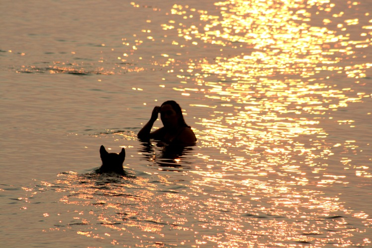 Spanish Banks Sunset Swim 5300 Copyright Shelagh Donnelly