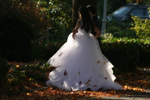 Fall Wedding 7795Copyright Shelagh Donnelly