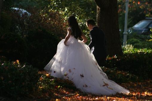Fall Wedding 7796 Copyright Shelagh Donnelly