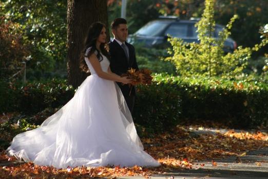 Fall Wedding 7788 Copyright Shelagh Donnelly
