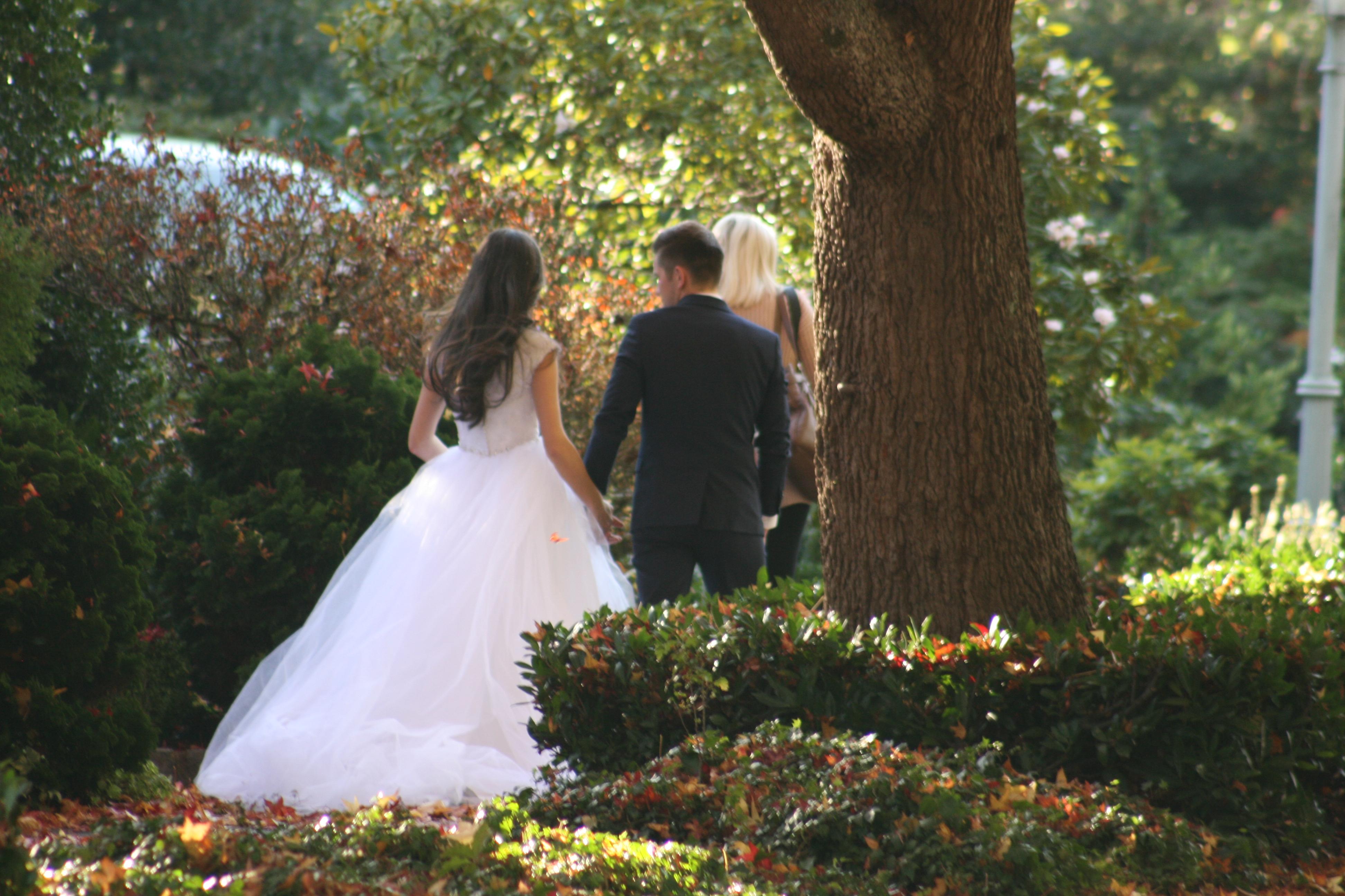 Fall Wedding 7799 CCopyright Shelagh Donnelly
