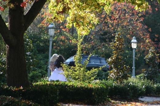 Fall Wedding 7801 Copyright Shelagh Donnelly
