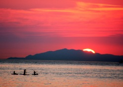 Sunset Paddlers Spanish Banks 7010 Copyright Shelagh Donnelly