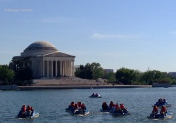 Washington Tidal Basin Boaters, Jefferson Memorial Copyright Shelagh Donnelly
