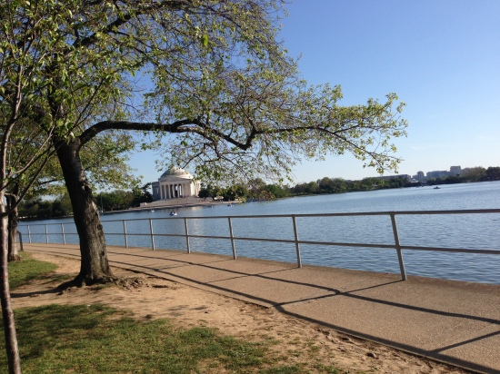 Washington Tidal Basin Copyright Shelagh Donnelly