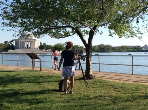 Washington Tidal Basin Painting Jefferson Memorial Copyright Shelagh Donnelly
