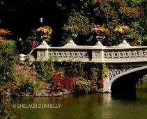 bow-bridge-urns-central-park-nyc-copyright-shelagh-donnelly