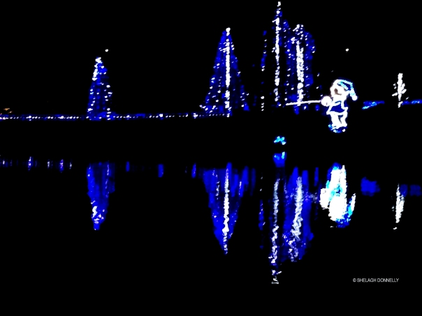 christmas-lights-at-lafarge-lake-7789-copyright-shelagh-donnelly