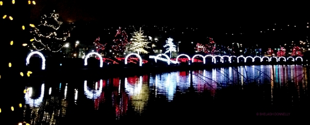 christmas-lights-at-lafarge-lake-7842-copyright-shelagh-donnelly