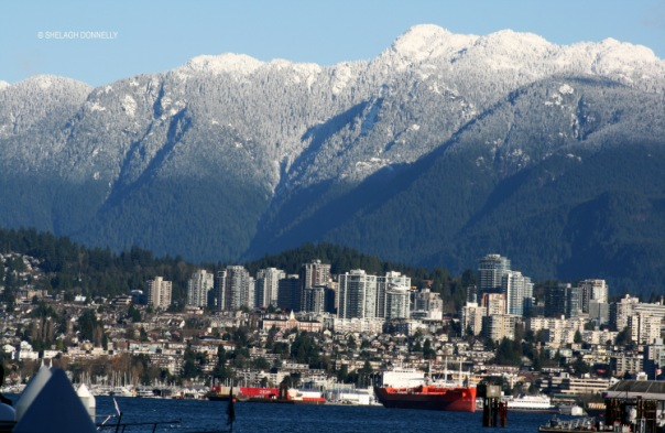 dec-in-vancouver-2365-copyright-shelagh-donnelly