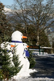 queen-e-park-snowmen-copyright-shelagh-donnelly