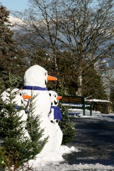 queen-e-park-snowmen-copyright-shelagh-donnelly