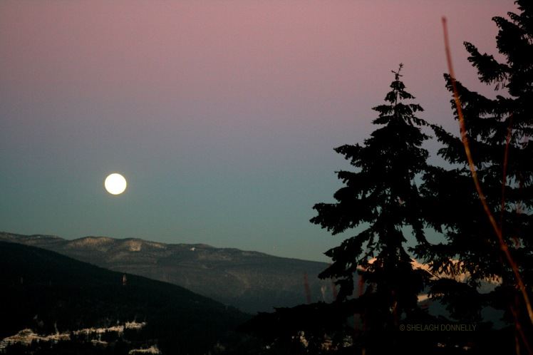 full-moon-rising-2965-copyright-shelagh-donnelly