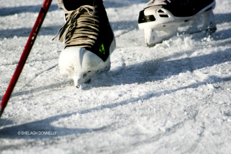 hockey-at-trout-lake-3162-copyright-shelagh-donnelly