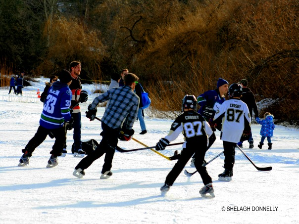 hockey-shinny-at-trout-lake-2017-3399-copyright-shelagh-donnelly