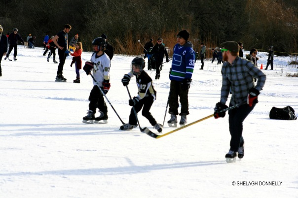 hockey-shinny-at-trout-lake-2017-3400-copyright-shelagh-donnelly