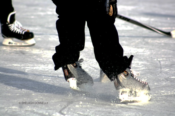 hockey-time-3367-copyright-shelagh-donnelly