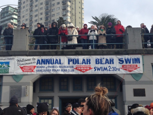Watching the Brave - 2017 Polar Bear Swim Copyright Shelagh Donnelly