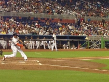 miami-marlins-copyright-shelagh-donnelly