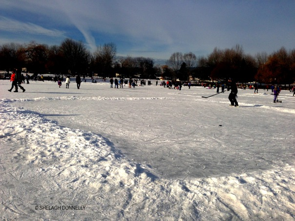 outdoor-rink-trout-lake-copyright-shelagh-donnelly