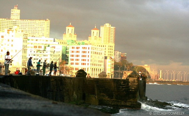 fishing-from-the-malecon-17-4373-copyright-shelagh-donnelly