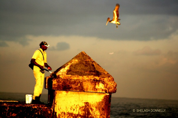 fishing-from-the-malecon-17-4399-copyright-shelagh-donnelly