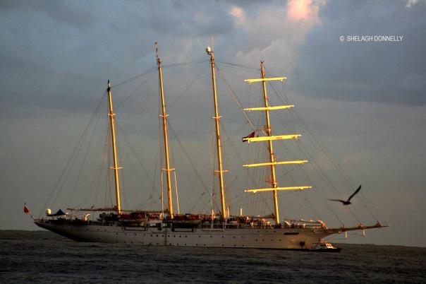 havana-harbour-17-4364-copyright-shelagh-donnelly