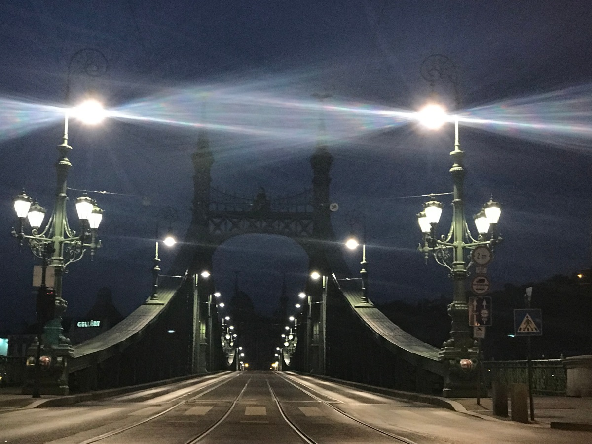 Budapest Before Dawn - Liberty Bridge