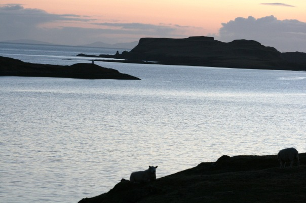18_9331 Dusk_Silhouettes_Struan_Isle_Of_Skye Copyright Shelagh Donnelly